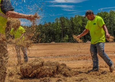 guys-throwing-hay